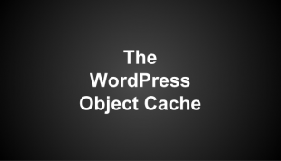Summary of The WordPress Object Cache – Presentation